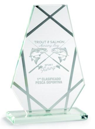 2354-Cristal-Economico-Trofeo-Placa-Reconocimiento-Homenaje