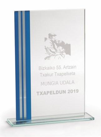 2374-Cristal-Economico-Trofeo-Placa-Reconocimiento-Homenaje