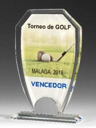 9315-Cristal-Economico-Trofeo-Placa-Reconocimiento-Homenaje