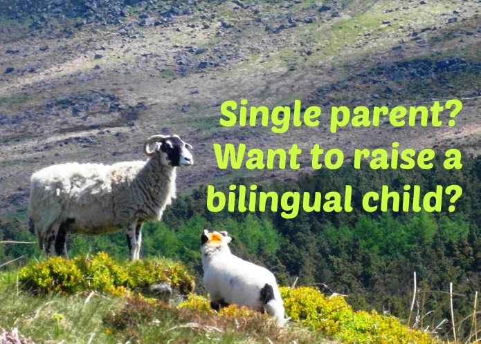 Single parent? Want to raise a bilingual child?