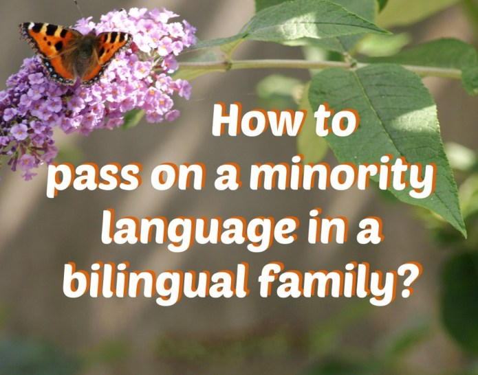 How to pass on a minority language in a bilingual family