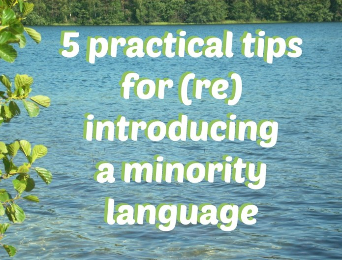 5 practical tips for reintroducing a minority language