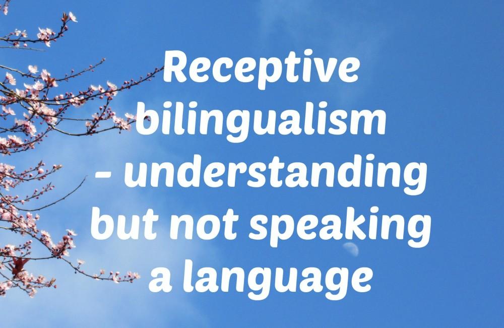 Receptive bilingualism