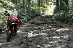 multistrada_1200_chesterfield_gorge_oneswithfunes-L