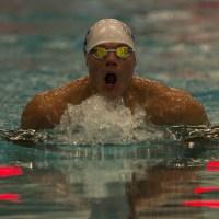 The basics of breaststroke