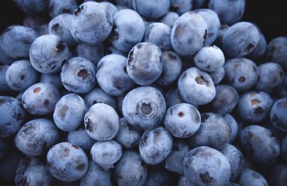 multisport fruits runners blueberry unsplash