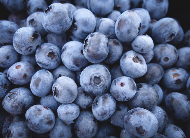 multisport fruits runners blueberry unsplash