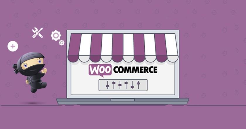 WooCommerce as eCommerce Startups