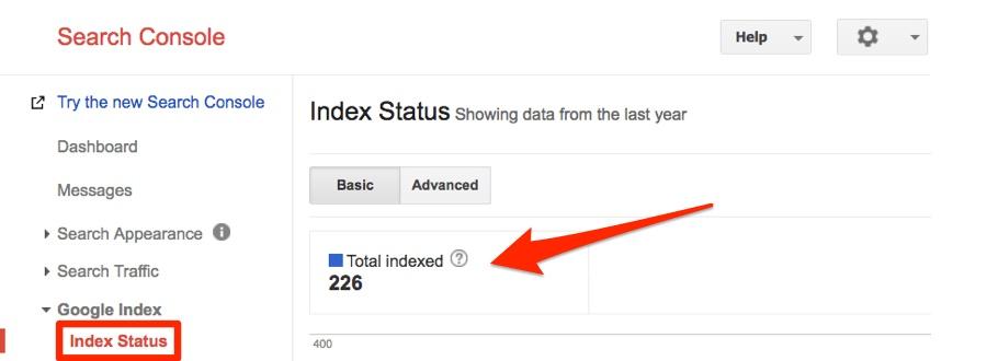 Google Search Index Status
