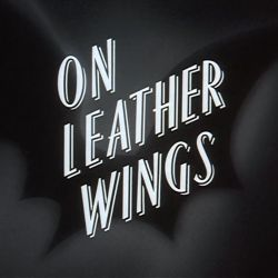 Batman: The Animated Series On Leather Wings