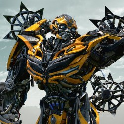 Bumblebee in Age of Extinction