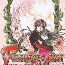 fushigi yugi genbu kaiden 12 feature