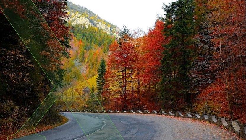 ¿Cómo prevenir accidentes en la época de otoño?