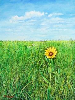Sunbathing on the Prairie