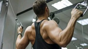 Building muscular body .. All the tips