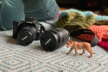 Canon EOS 250D und Objektiv EF-S 18-200mm