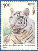 mumbai postal code
