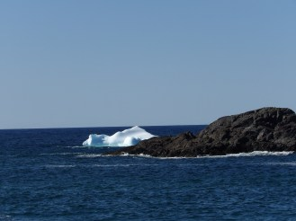 The first of many iceberg pictures.