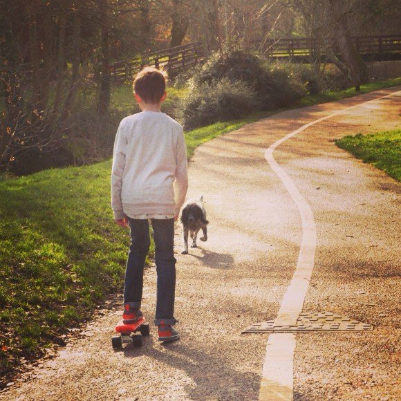 skateboarding dog walk in Devon https://muminanutshell.com