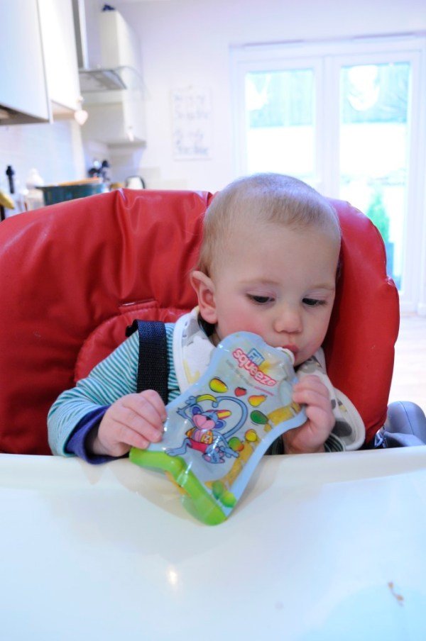 Fill n squeeze baby food pouch maker from The Beebies Baby Store.
