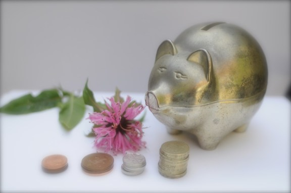 Helping you to be wise with your money with some money saving tips
