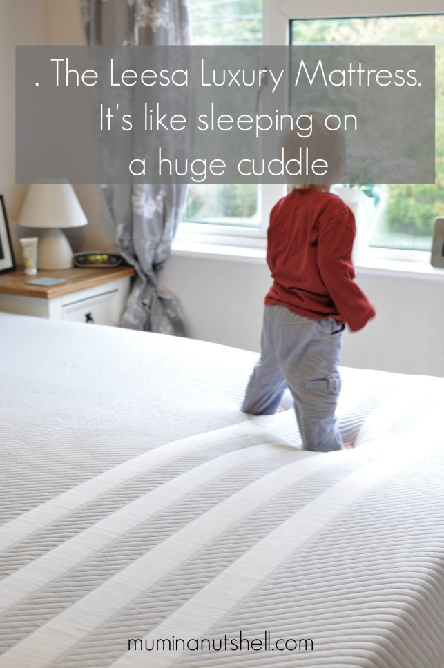 Laying In A Bed of dreams | A Leesa Luxury Mattress Review