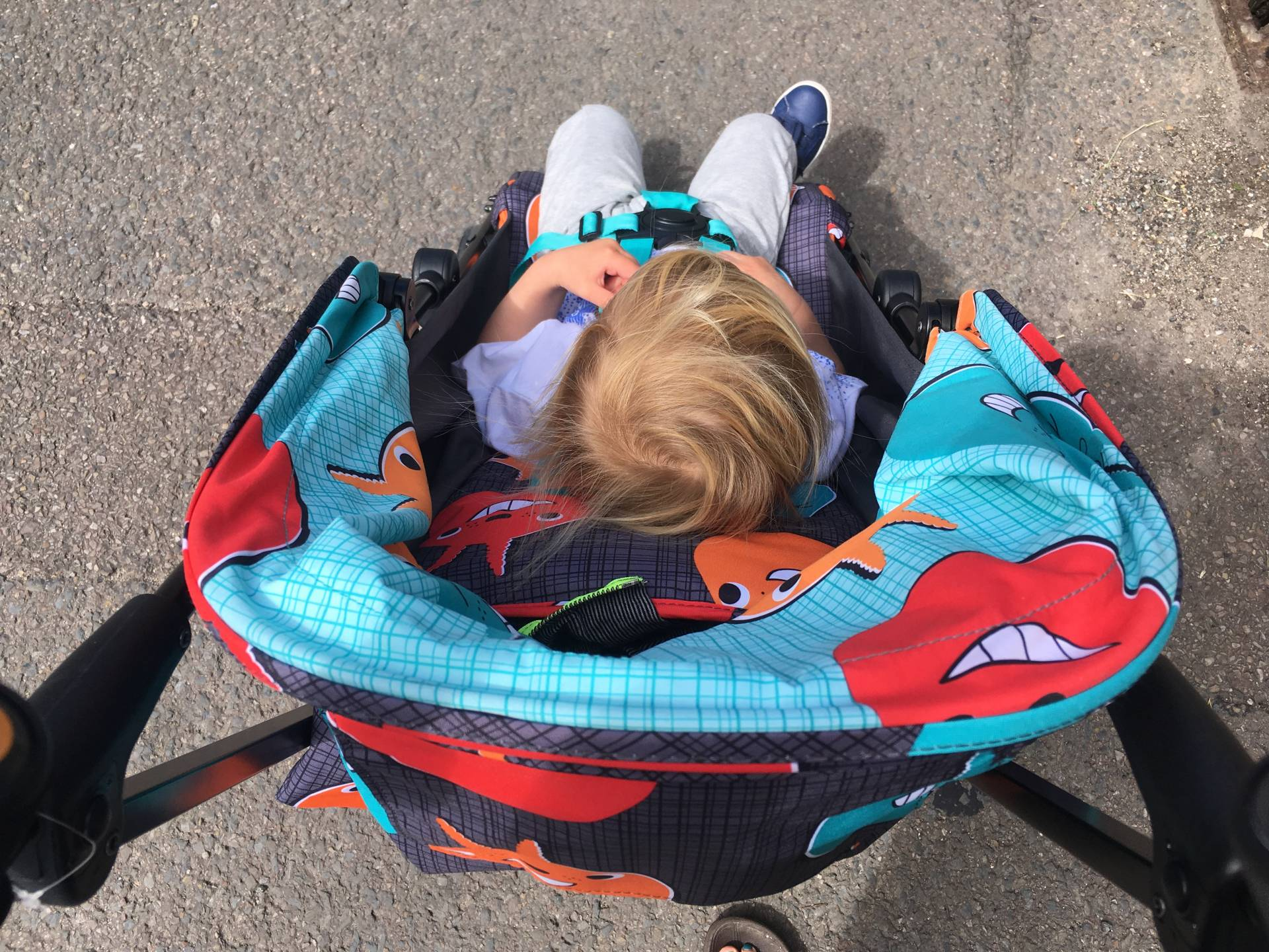 going all retro with the Cosatto Supa Go stroller which has seen us through train journeys and day trips.