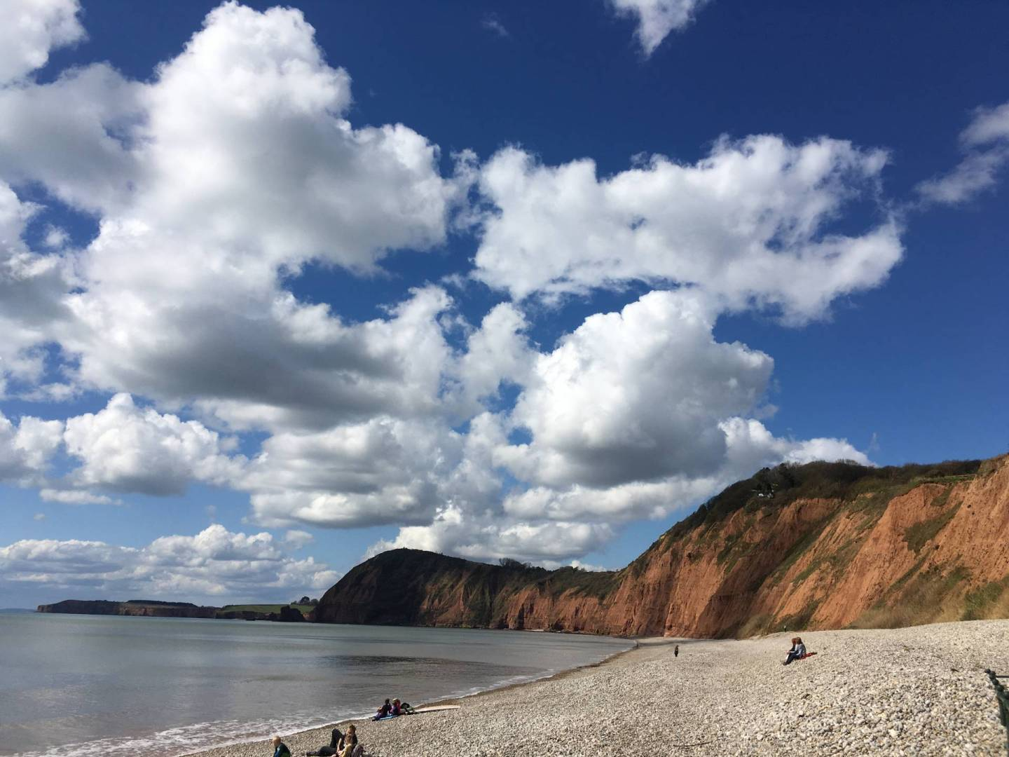 My Top East Devon Dog Friendly Beaches