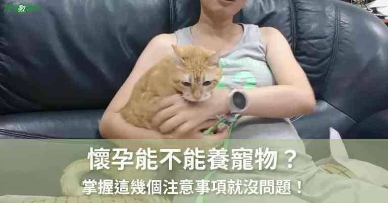懷孕能不能養寵物
