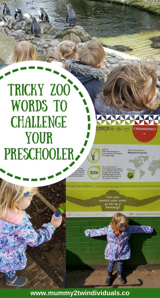 Early zoo vocabulary to challenge toddlers and preschoolers. Try these tricky zoo words.