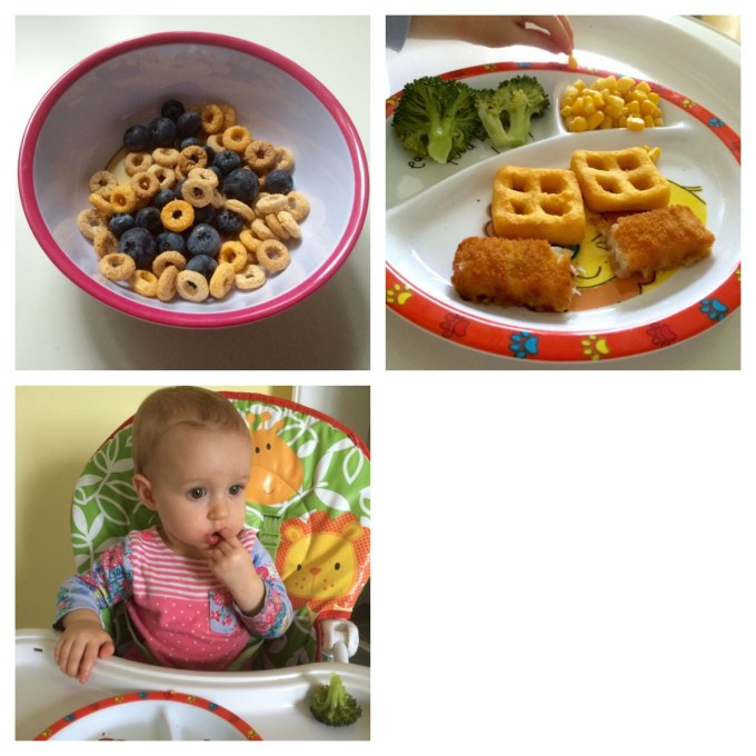 Allergy friendly BLW meal ideas