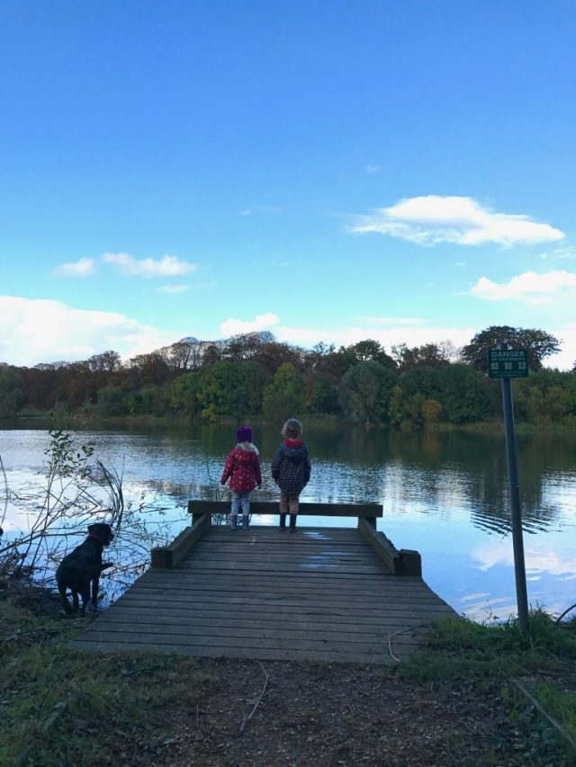 Lake shot at Hinchingbrooke Park