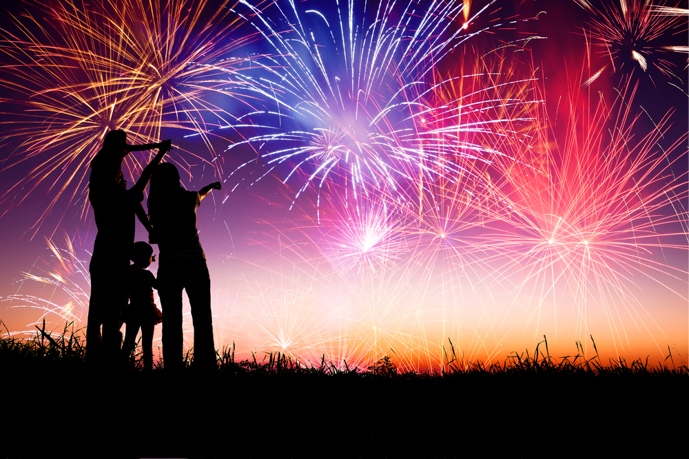 How to keep your pets safe during fireworks this weekend