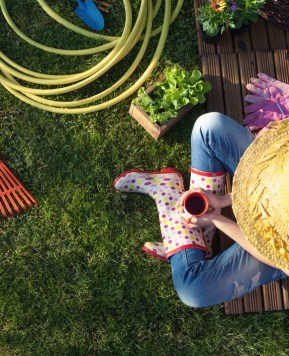 Back from the basics: 5 tips for getting the most out of your backyard