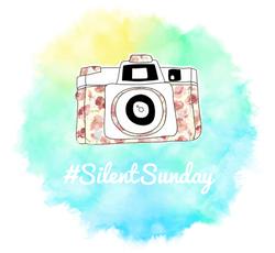 Silent Sunday Logo