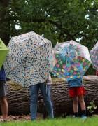 Keeping dry this Autumn with Susino umbrellas