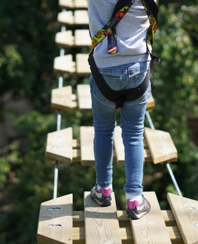 A different kind of gift this Christmas with Go Ape