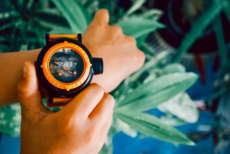 Dinosaur projector watch