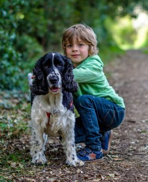 How to train your dog to be calm with children