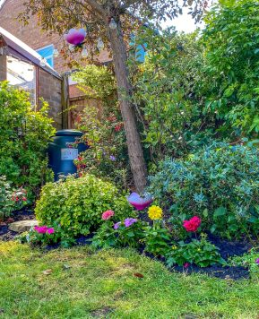 5 amazing family garden tips to be ready for Autumn
