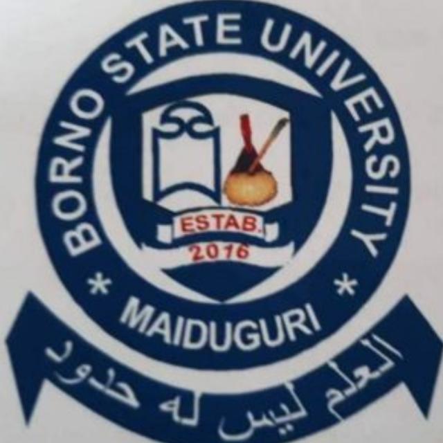 My Logo: Borno State University Post UTME Form