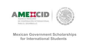 My Logo: Mexican Government Scholarship