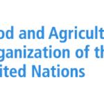 My Logo : FAO United Nations