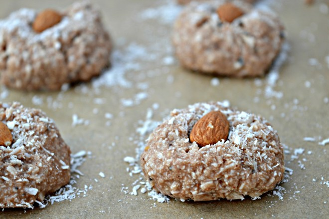 No Bake Coconut Milk Chocolate Sweets