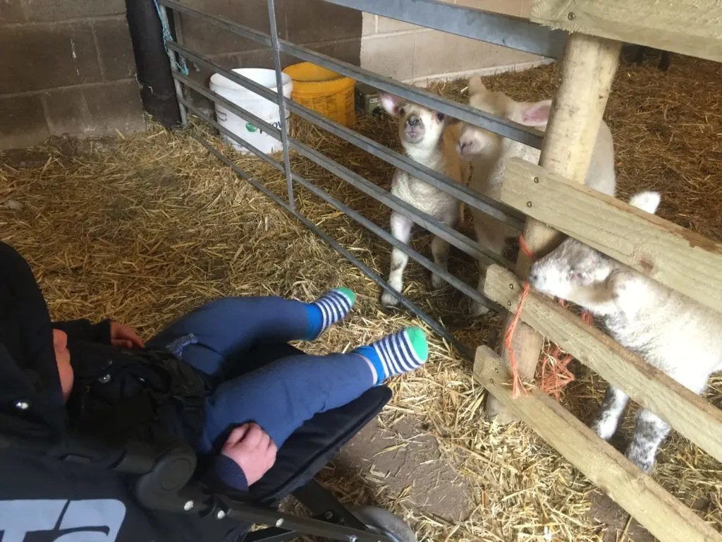 Church farm is a fantastic day out for kids and adults alike. Read our review of our lovely day out during the Easter Holidays at Church Farm.