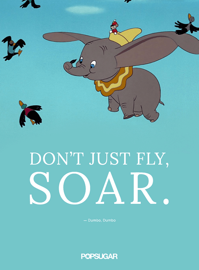 Decisions - Don't just fly, soar