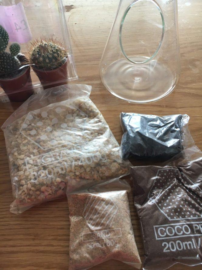 Chemist Terrarium Kit from Suck UK