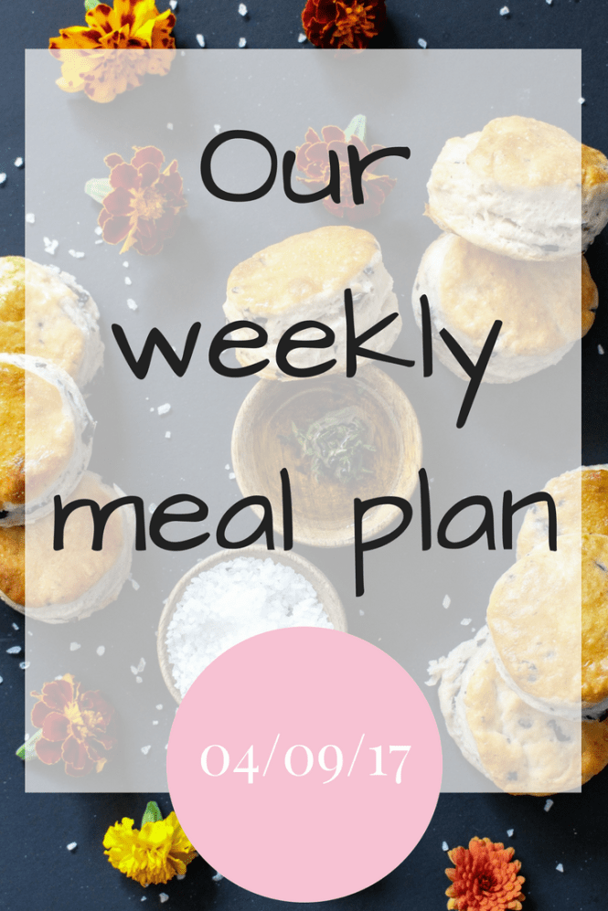Our weekly meal plan 04 09