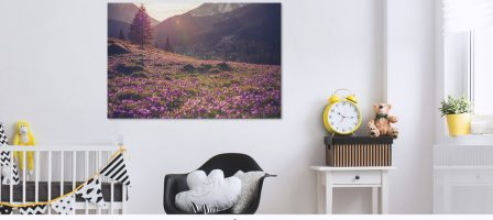 *Prize Draw* £50 to spend at My-Picture.co.uk