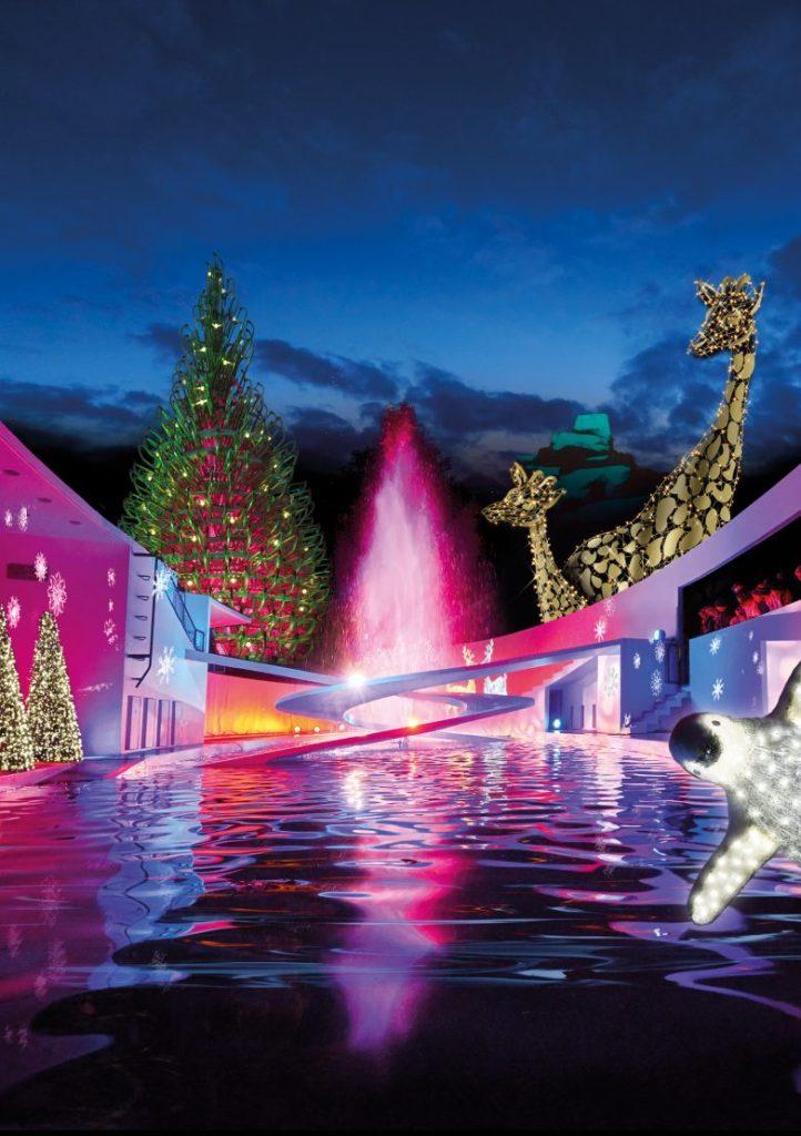 *Prize Draw* Christmas Light Trail